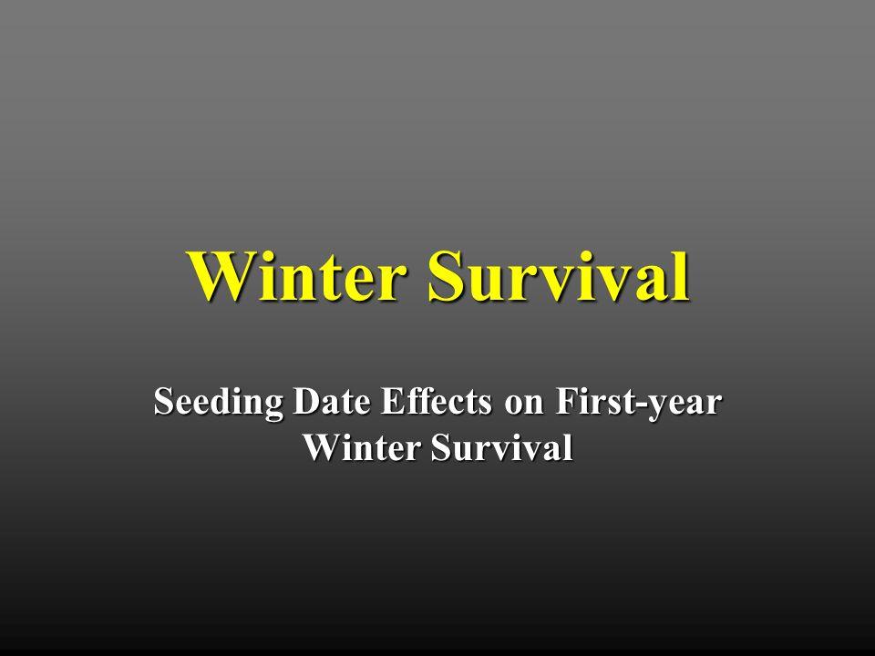 Seeding Date Study (4 x 6) Factorial RCBD Seeding DateSeeding Date 1.15 April 2.15 May 3.15 June 4.15 July CultivarCultivar 1.Jackpot 2.Mirage 3.Mohawk 4.Princess 5.NuMex Sahara 6.Yukon All cultivars seeded at 1.0 lb PLS / 1000 ft 2