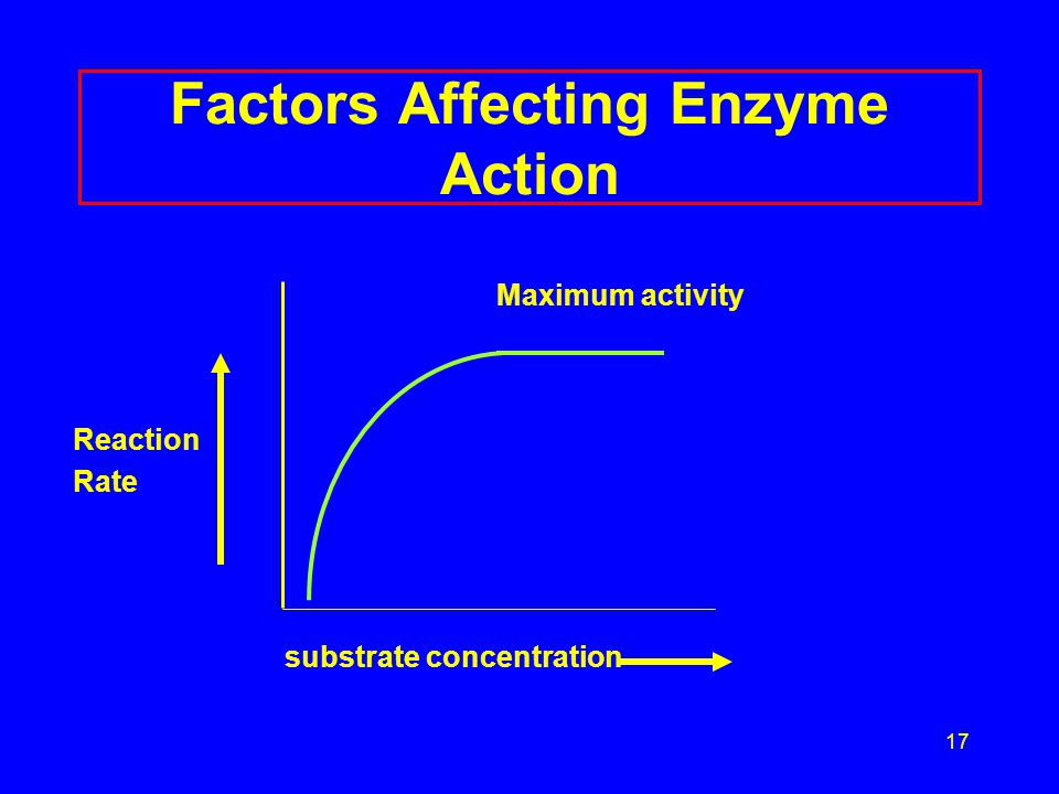 18 Factors Affecting Enzyme Action: pH Maximum activity at optimum pH R groups of amino acids have proper charge Tertiary structure of enzyme is correct Narrow range of activity Most lose activity in low or high pH