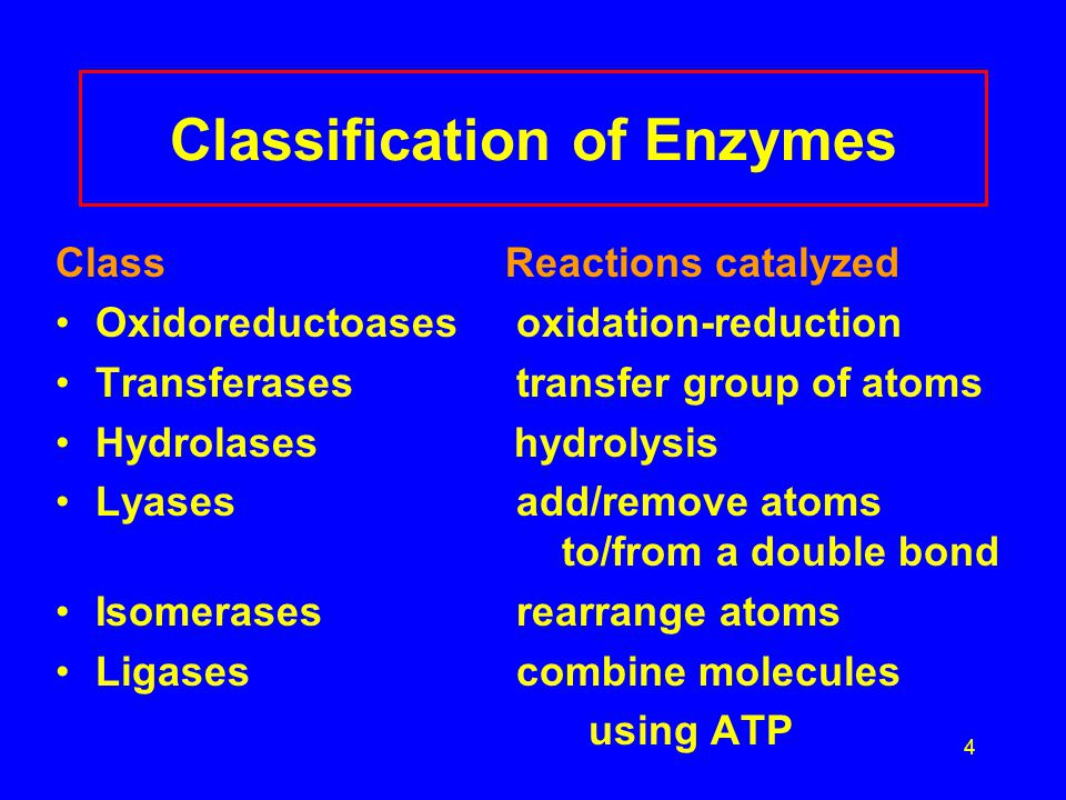 5 Examples of Classification of Enzymes Oxidoreductoases oxidases - oxidize,reductases – reduce Transferases transaminases – transfer amino groups kinases – transfer phosphate groups Hydrolases proteases - hydrolyze peptide bonds lipases – hydrolyze lipid ester bonds Lyases carboxylases – add CO 2 hydrolases – add H 2 O