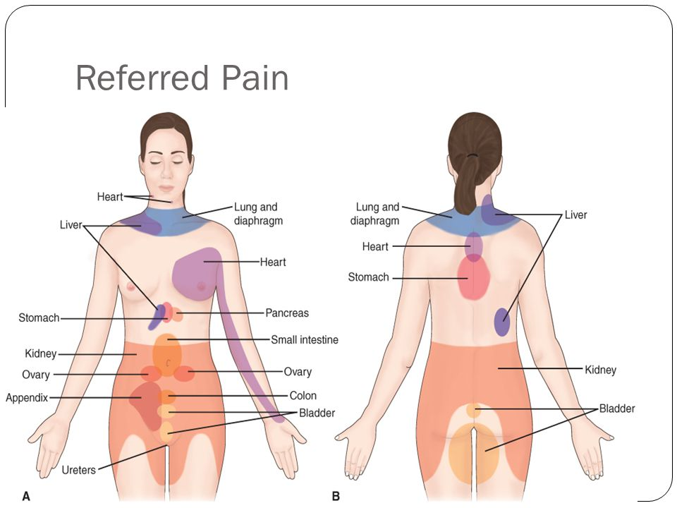 Pain: Etiology Neuropathic pain: pain resulting from an injury of or abnormal functioning of peripheral or central nervous system (fibromyalgia, peripheral neuropathy) Intractable: pain that is very resistant to treatment Phantom Pain: pain in an amputated limb