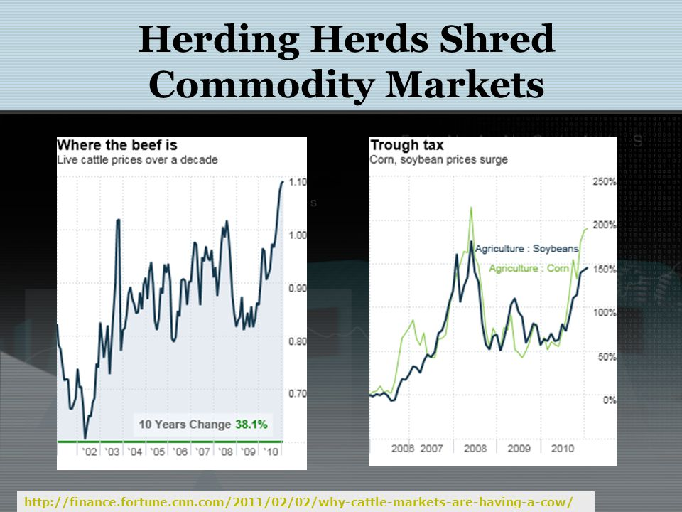 Herding Herds Shred Commodity Markets Financial Investment in Commodity Markets: Potential Impact on Commodity Prices & Volatility:I IF Commodities Task Force Submission to the G20.