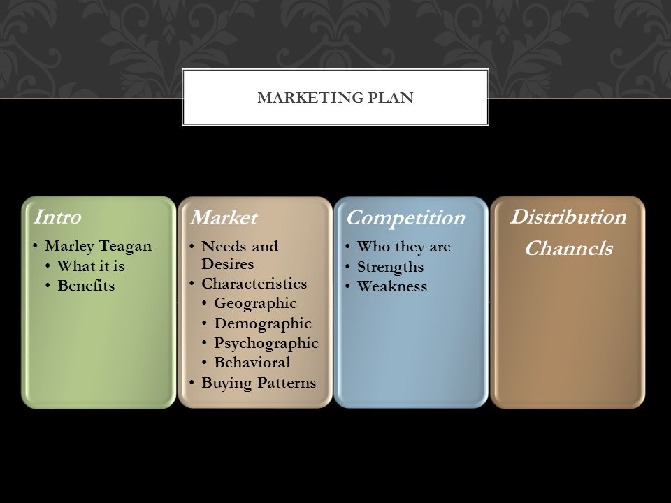 Pricing Opportunities and threats Marketing Strategy Positioning Product Differentiation Price/Quality Communication Ads Direct Marketing Sales Promotion PR Action Plan Production Consideration Production Schedule Key Issues Inventory Levels MARKETING PLAN
