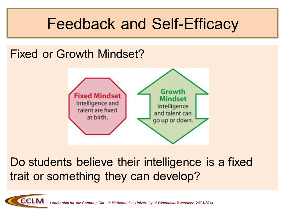 Leadership for the Common Core in Mathematics, University of Wisconsin-Milwaukee 2013-2014 Feedback Correlated to Fixed and Growth Mindsets All great teachers teach students how to reach the high standards.