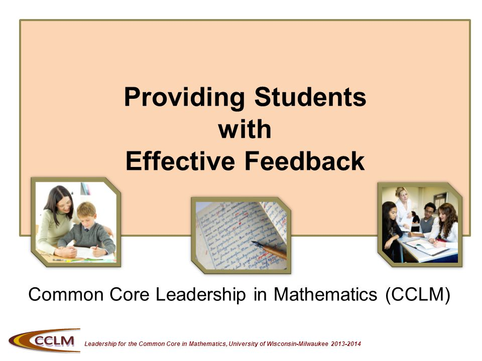 Leadership for the Common Core in Mathematics, University of Wisconsin-Milwaukee 2013-2014 Assessment Strategies Refer back to your CCLM binder: Seven Strategies of Assessment for Learning Focus is on Feedback