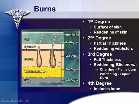 Burns 1 st Degree Surface of skin Reddening of skin 2 nd Degree Partial Thickness Reddening w/blisters 3rd Degree Full Thickness Reddening, Blisters w/: