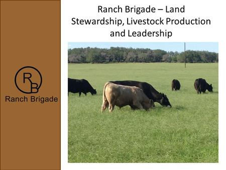 Ranch Brigade – Land Stewardship, Livestock Production and Leadership.