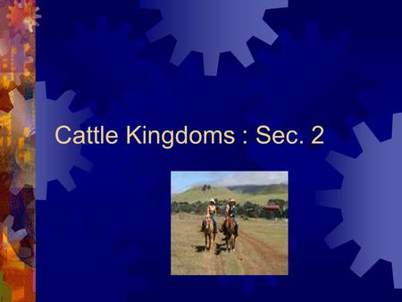 Cattle Kingdoms : Sec. 2. Cattle  Texas Longhorns resulted from Spanish cows bred with Anglo cows.  Spanish vaqueros (cowboys) used a lariat to round.