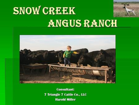 SNOW CREEK ANGUS RANCH SNOW CREEK ANGUS RANCH Consultant: 7 Triangle 7 Cattle Co., LLC Harold Miller.