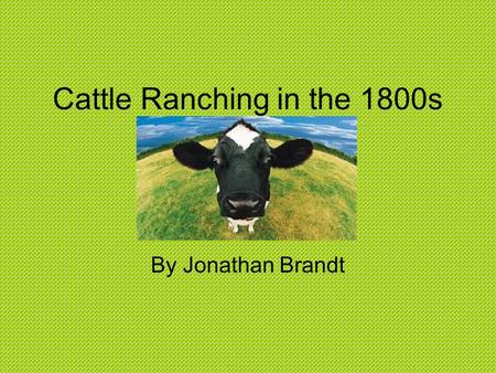Cattle Ranching in the 1800s By Jonathan Brandt. The History A ranch is a large area of land that is used to farm animals. Ranchers let the animals graze,