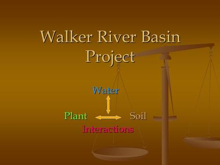 Walker River Basin Project Water PlantSoil Interactions Interactions.
