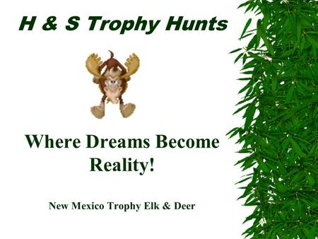 H & S Trophy Hunts Where Dreams Become Reality! New Mexico Trophy Elk & Deer.