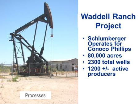 Schlumberger Operates for Conoco Phillips 80,000 acres 2300 total wells 1200 +/- active producers Waddell Ranch Project Processes.