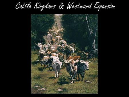 Cattle Kingdoms & Westward Expansion. Spanish Origins *The Spanish first brought cattle & horses to Texas -By early 1800's: nearly 1 million wild longhorns.