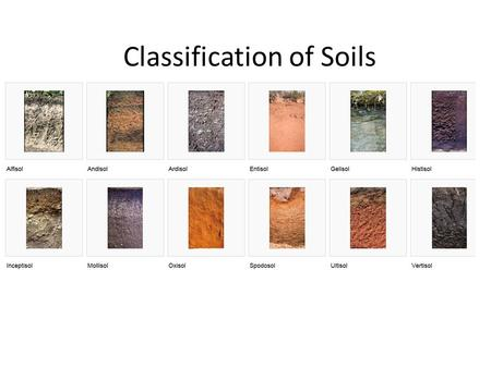 Classification of Soils. I.Zonal Classification of Soils A.Russian School V.V. Dokuchaiev—proposed a zonal (climatic) classification: Chernozems, Podzols.