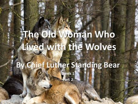 The Old Woman Who Lived with the Wolves By Chief Luther Standing Bear Week 1 Part 2.