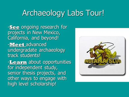 Archaeology Labs Tour! - See ongoing research for projects in New Mexico, California, and beyond! - Meet advanced undergradate archaeology track students!