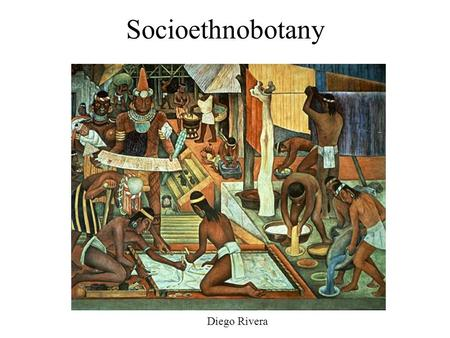 Socioethnobotany Diego Rivera. Socioethnobotany The study of the social aspects of the use of plants – motivated by a desire to understand how to best.