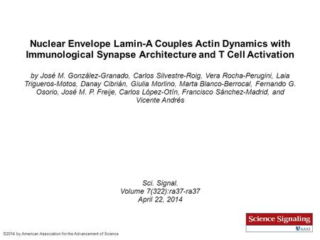 Nuclear Envelope Lamin-A Couples Actin Dynamics with Immunological Synapse Architecture and T Cell Activation by José M. González-Granado, Carlos Silvestre-Roig,