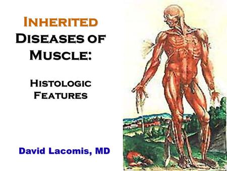 Inherited Diseases of Muscle: Histologic Features David Lacomis, MD.