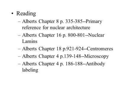 Reading –Alberts Chapter 8 p. 335-385--Primary reference for nuclear architecture –Alberts Chapter 16 p. 800-801--Nuclear Lamins –Alberts Chapter 18 p.921-924--Centromeres.
