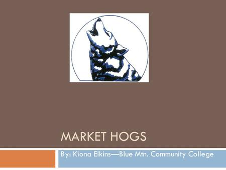 MARKET HOGS By: Kiona Elkins—Blue Mtn. Community College.