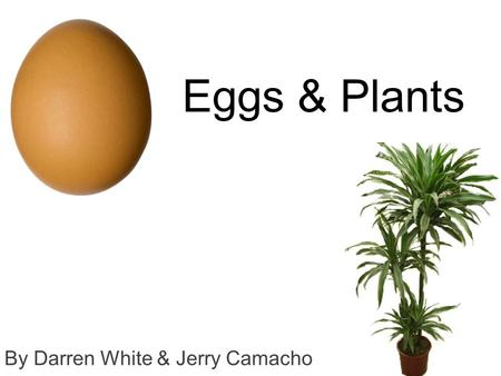 Eggs & Plants By Darren White & Jerry Camacho. Can eggshells aid in the growth of plants? Notes that were researched about eggshells An egg's outer shell.