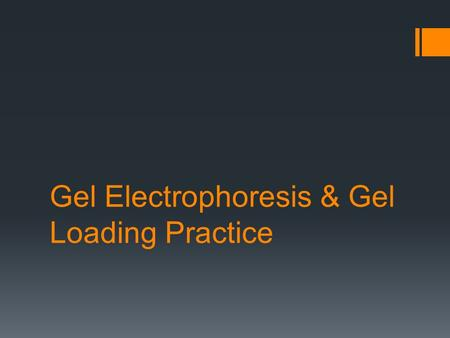 Gel Electrophoresis & Gel Loading Practice. Gel Electrophoresis The process by which electricity is used to separate charged molecules (DNA fragments,