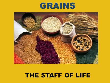 THE STAFF OF LIFE GRAINS. WHAT ARE GRAINS? We know from that grains are an important part of our diet. The orange section of the food pyramid represents.