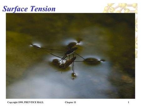 Copyright 1999, PRENTICE HALLChapter 111 Surface Tension.