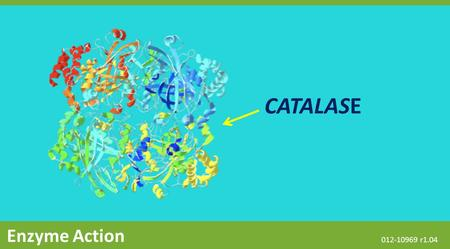 CATALASE Enzyme Action 012-10969 r1.04. The Snapshot button is used to capture the screen. The Journal is where snapshots are stored and viewed. The Share.