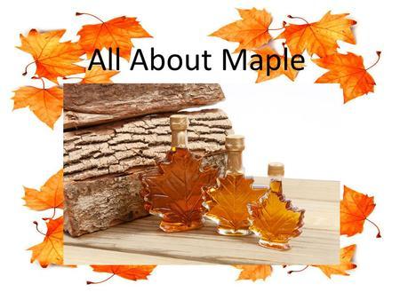 All About Maple. Find A Maple Woods To Tap Make sure you identify a maple tree not a cherry tree or another kind of tree Make sure the trees you are going.