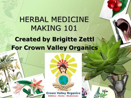 HERBAL MEDICINE MAKING 101 Created by Brigitte Zettl For Crown Valley Organics.