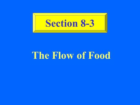Section 8-3 The Flow of Food.