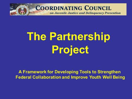 The Partnership Project A Framework for Developing Tools to Strengthen Federal Collaboration and Improve Youth Well Being.