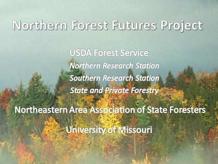 Northern Forest Futures A window on tomorrow's forests Revealing how today's trends and choices can change the future landscape of the North Collaborative.
