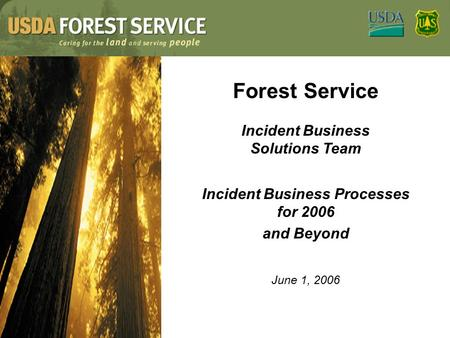 Forest Service Incident Business Solutions Team Incident Business Processes for 2006 and Beyond June 1, 2006.