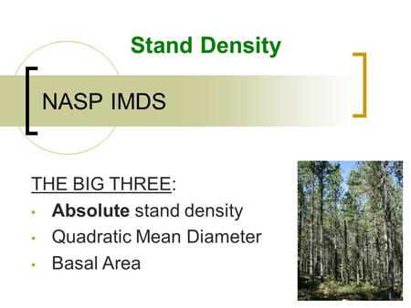 NASP IMDS Stand Density THE BIG THREE: Absolute stand density Quadratic Mean Diameter Basal Area.