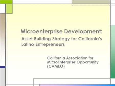 Microenterprise Development: Asset Building Strategy for California's Latino Entrepreneurs California Association for MicroEnterprise Opportunity (CAMEO)