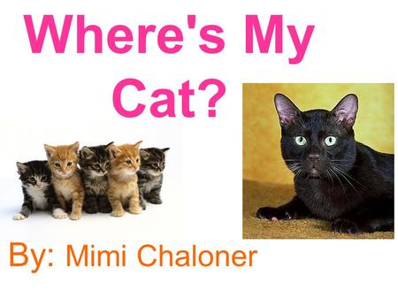 Where's My Cat? By: Mimi Chaloner. This book belongs to: Emily.