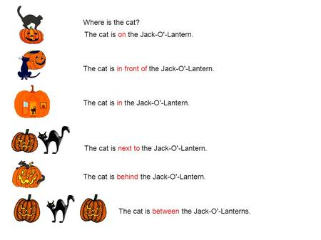 Where is the cat? The cat is on the Jack-O'-Lantern. The cat is in front of the Jack-O'-Lantern. The cat is in the Jack-O'-Lantern. The cat is next to.