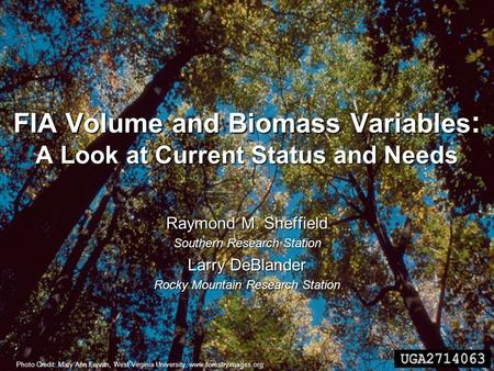 FIA Volume and Biomass Variables : A Look at Current Status and Needs Raymond M. Sheffield Southern Research Station Larry DeBlander Rocky Mountain Research.