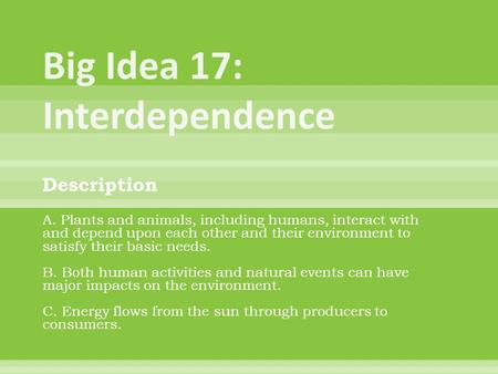 Big Idea 17: Interdependence