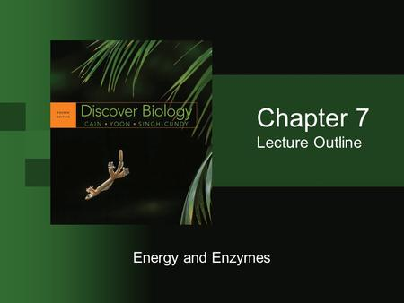 biology 12 enzymes and metabolism test pdf