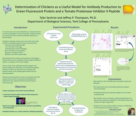 Introduction Determination of Chickens as a Useful Model for Antibody Production to Green Fluorescent Protein and a Tomato Proteinase Inhibitor II Peptide.