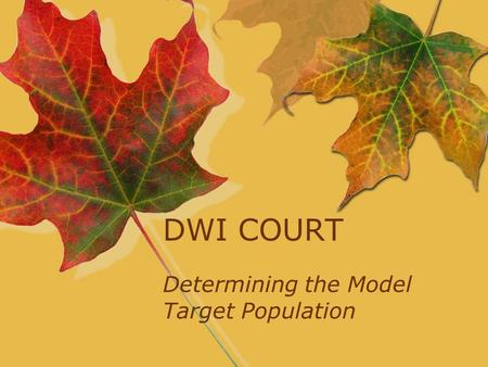DWI COURT Determining the Model Target Population.