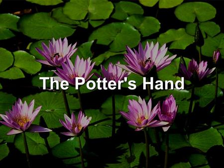 The Potter's Hand. Beautiful Lord, wonderful Saviour I know for sure all of my days are held in Your hand Crafted into Your perfect plan Beautiful Lord,