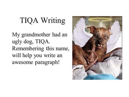 TIQA Writing My grandmother had an ugly dog, TIQA. Remembering this name, will help you write an awesome paragraph!