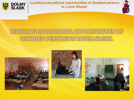 46% of disabled persons graduated primary school 4,5% had attained higher education, LOW LEVEL OF EDUCATION 80% of disabled persons in are inactive professionally.