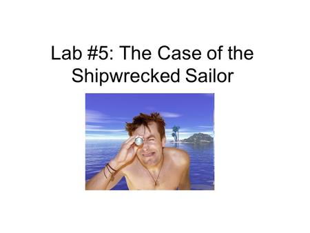 case regarding typically the shipwrecked sailors essay