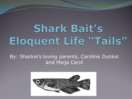 By: Sharkie's loving parents, Caroline Dunkel and Maija Carol.